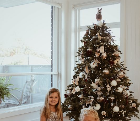 50 Beautiful New Ways to Decorate Your Christmas Tree