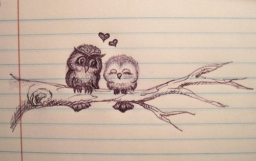 Love Birds Pencil Drawing