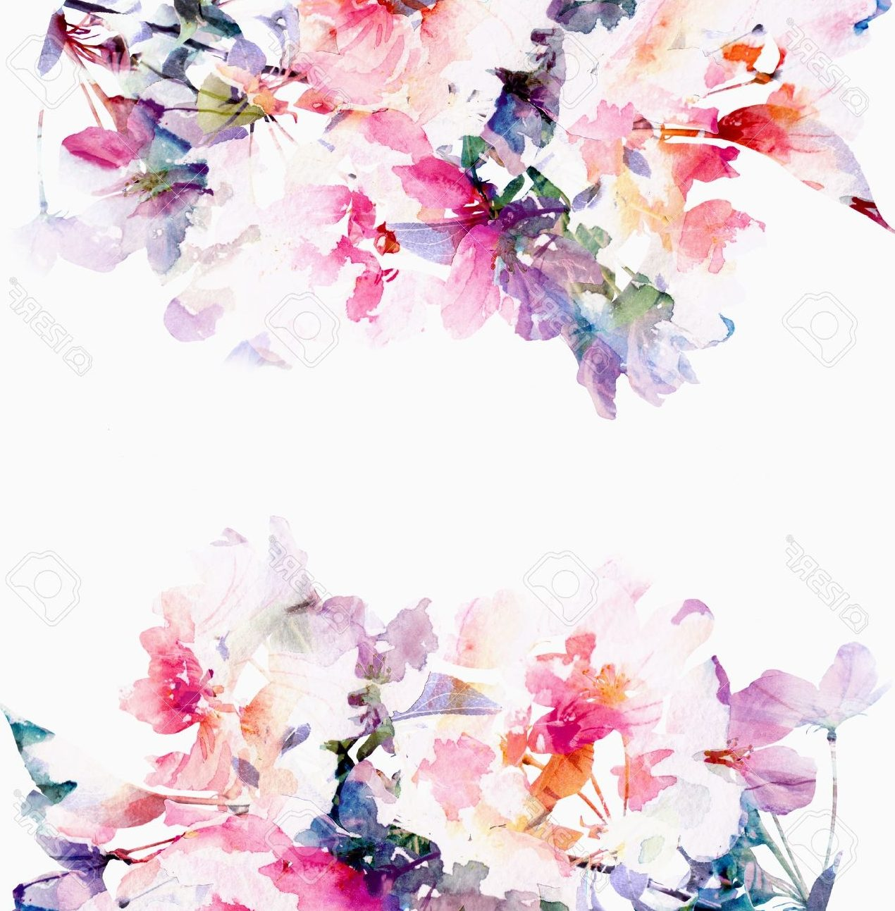 50 Floral Background Ideas Hd Download Free Background Images