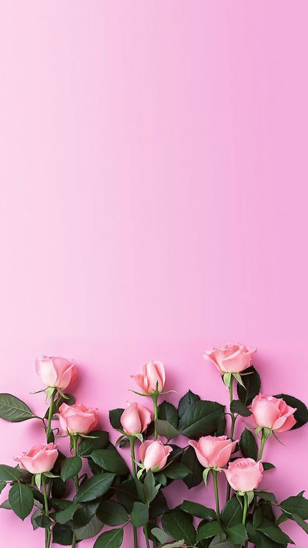 50+ Floral Background Ideas [HD] | Download Free Background