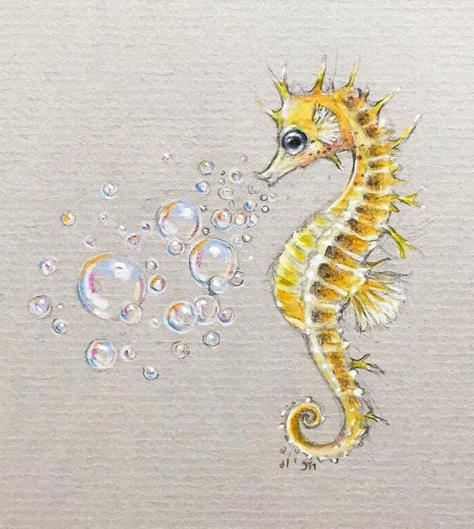 How to Draw a Seahorse Step by Step for Beginners 2020