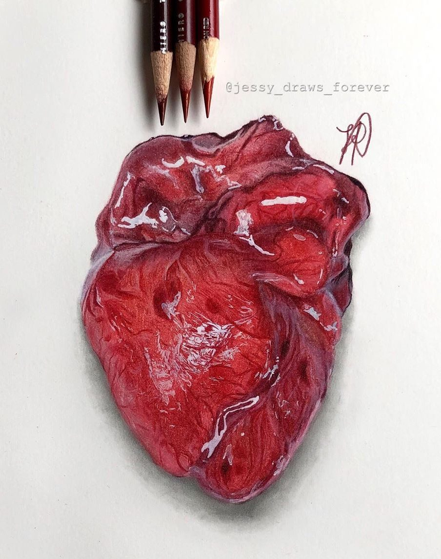 Realistic Heart Drawings