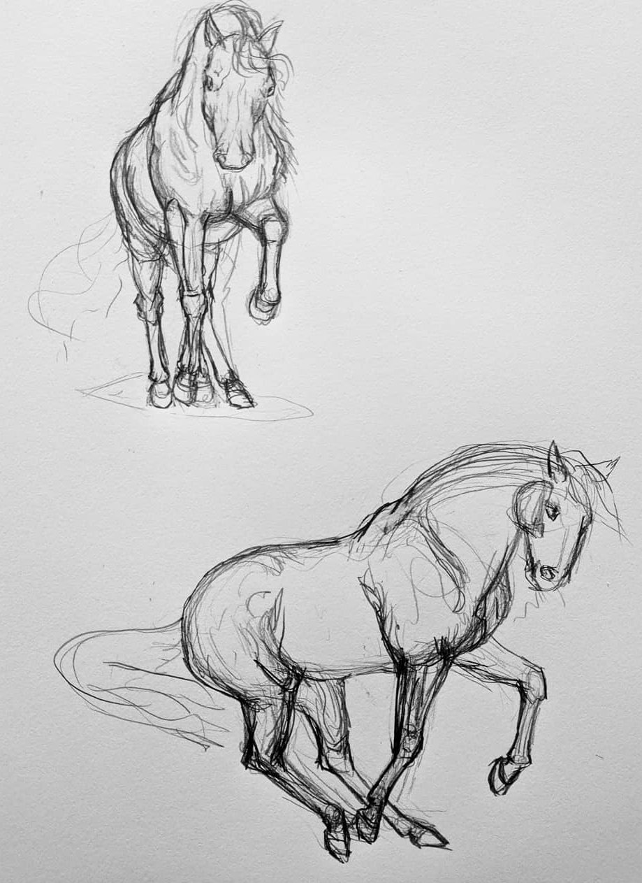 how to draw a horse step by step