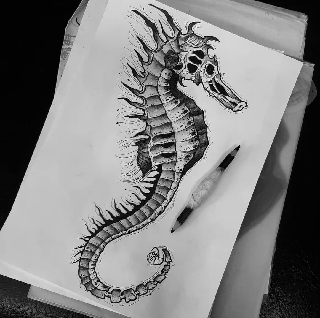 Seahorse Drawing Easy Step by Step 2020