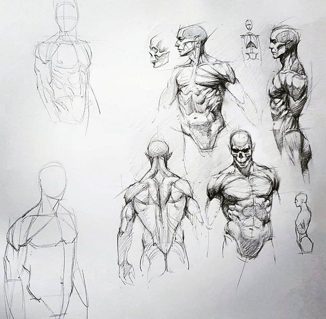 poses human anatomy drawing reference