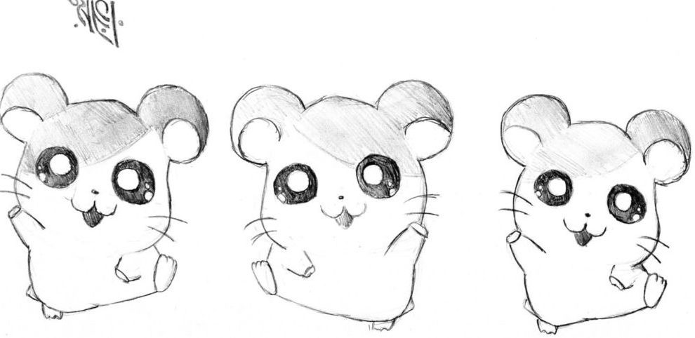 Cartoon cute hamster drawing