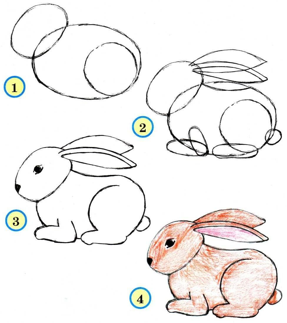 Cute rabbit drawing easy for kids