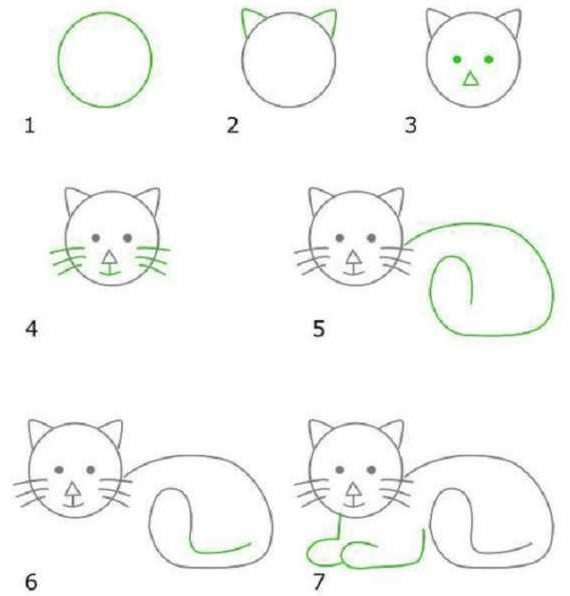 Easy cat drawing for beginners