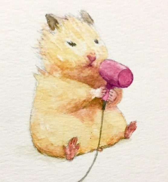 Easy hamster drawing