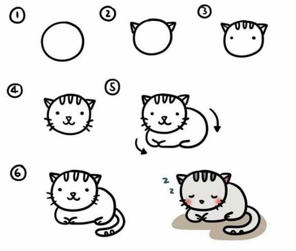 Easy step easy how to draw a cat