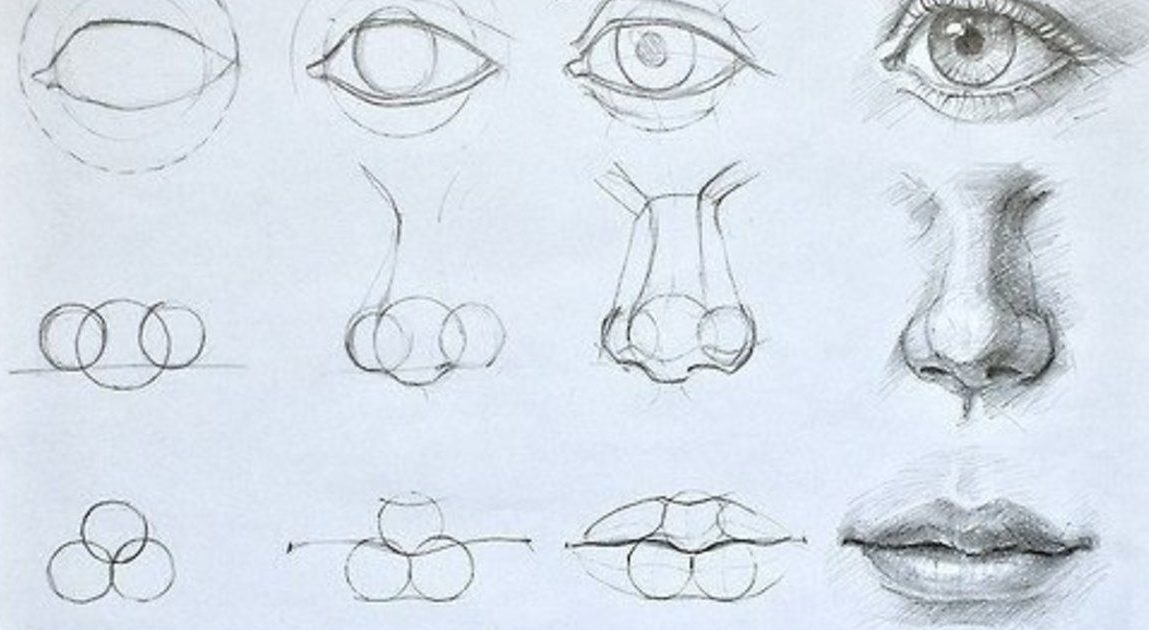How to draw a nose from an angle