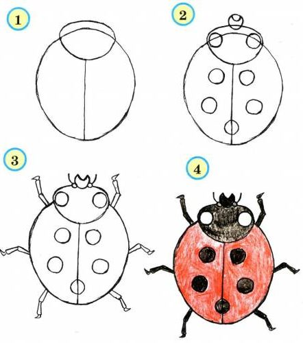 Ladybug drawing for kids