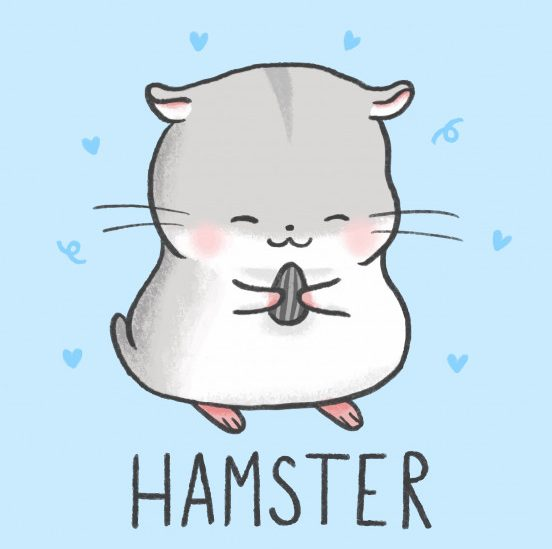 Simple cute hamster drawing