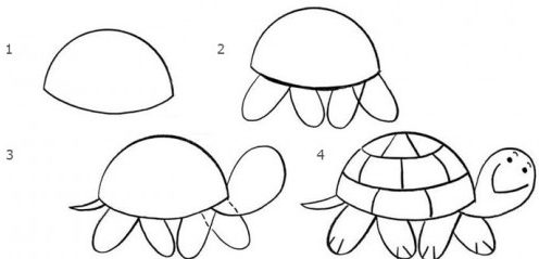 Turtle drawing easy for kids