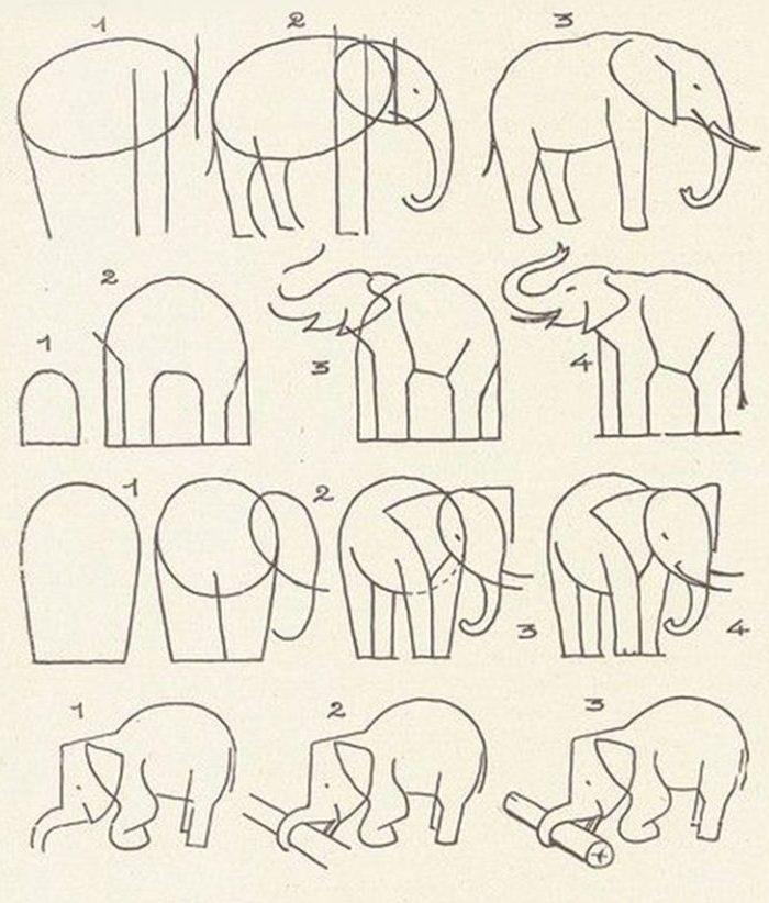 10 Realistic Elephant Drawings Step By Step Do It Before Me