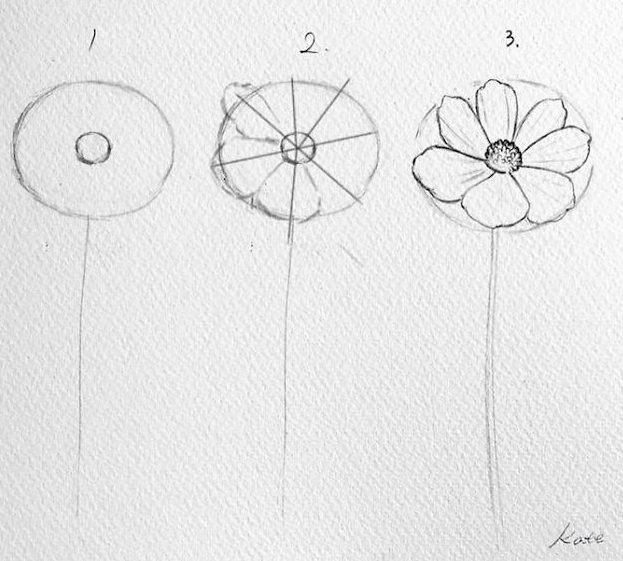 Hand drawn simple small flower drawings