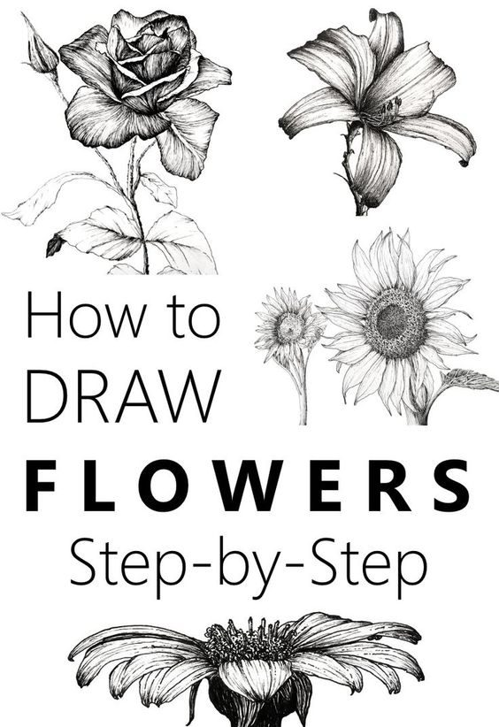 Step by step flower drawing tutorial