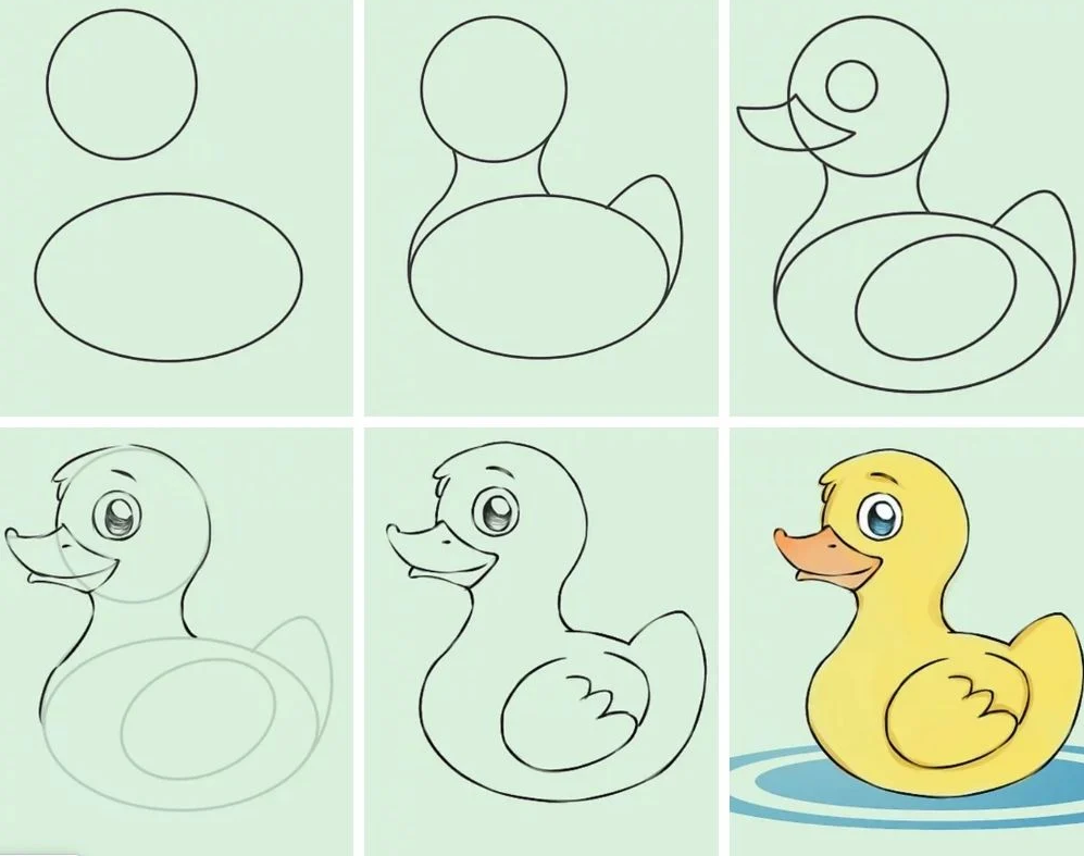 Duck drawing easy step by step