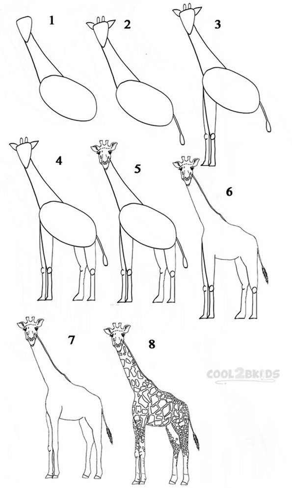 Giraffe drawing for kids step by step
