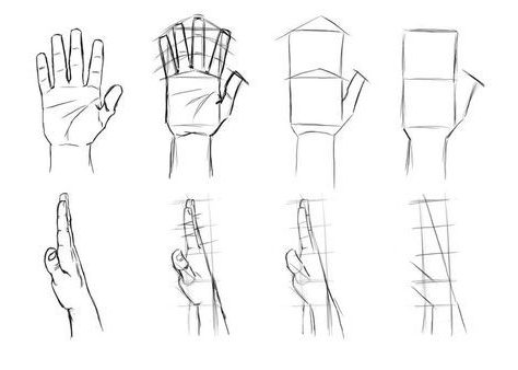 basic how to draw a hand