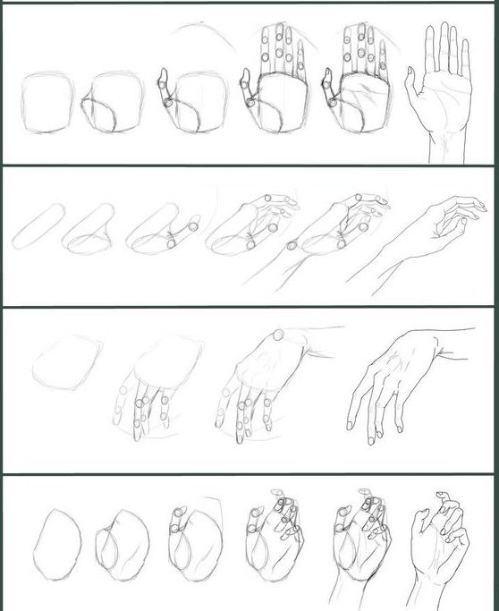 beginner hand drawing tutorial