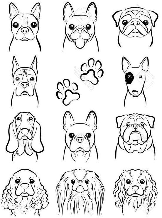cute dog drawing
