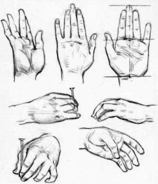 drawing hand step by pencil