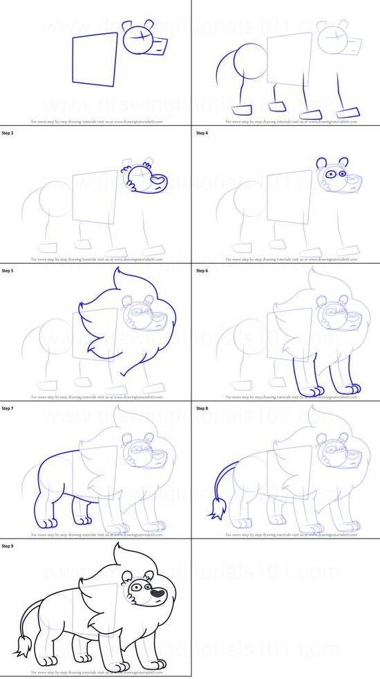 sketch how to draw a lion step by step